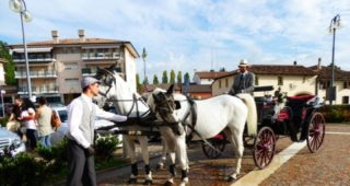 noleggio-carrozza-cavalli_carriage-horses-hire (5)